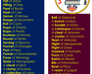 English Collective Nouns List, Collective Nouns For Things