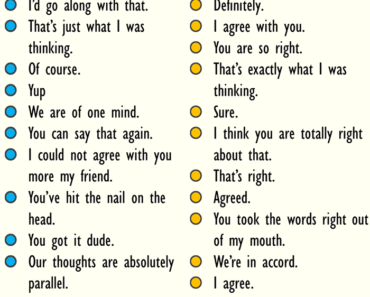 Ways To Say I Agree, English Phrases Examples
